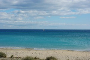 plage sauvages des Aresquiers