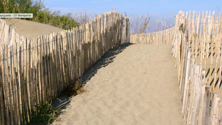 Du Bateau aux plages de La-Grande-Motte, Palavas et Carnon